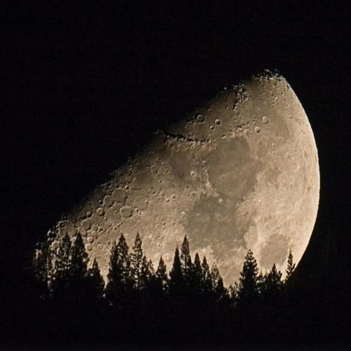 Wagner's Moon - Clarinet and Piano - Robert Groslot