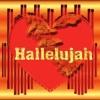 Hallelujah  - Leonard Cohen - Jeff Buckley (Hannah Trigwell Live Cover)