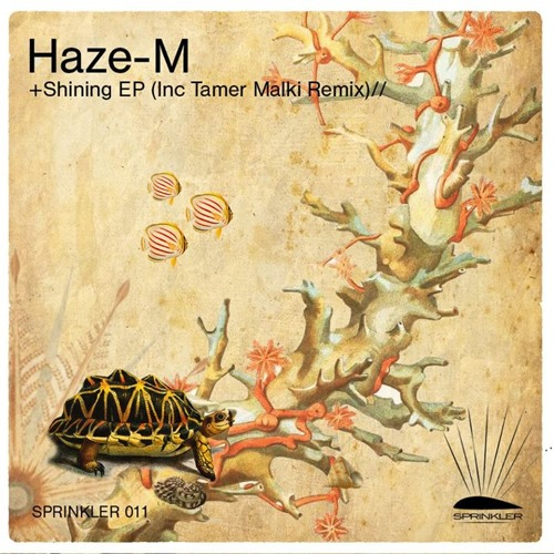 Haze-M - Intrigue  (Tamer Malki Remix)