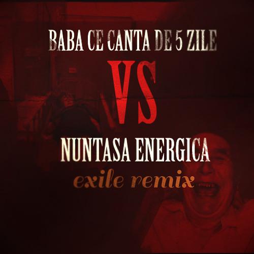 Baba ce cântă de 5 zile + Nuntașa energică (EXILE REMIX)