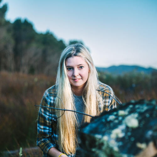 JAMIE MCDELL - The Lonely Whale Song