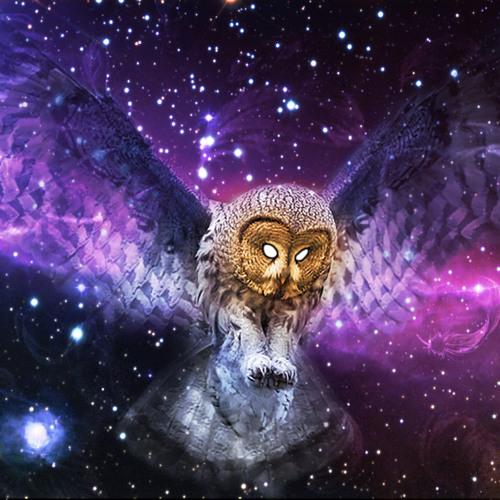 ( Psychofreaks / Muamba Rec )Cosmic Owl