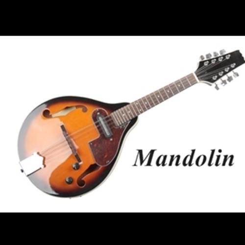 Mandolin Kontakt Instrument Demo (T.D.Samples)
