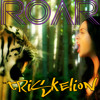 KATY PERRY ROAR (Triskelion RE-edit) free download.MP3