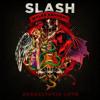 Slash - Anastasia (Full Guitar Cover)