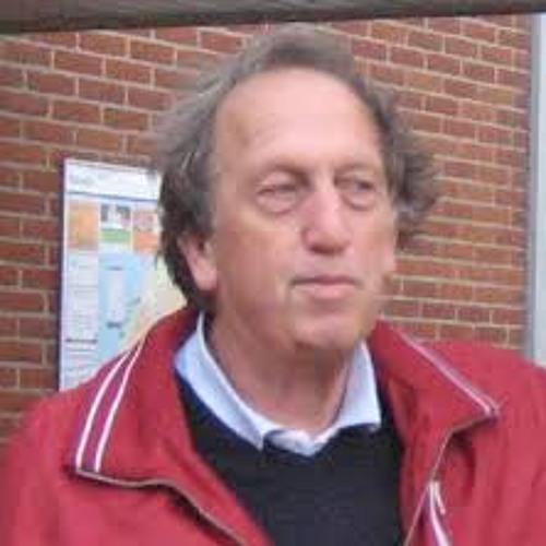 """Geert Diemer over het alternatief voor """"De Horn"""" in Rijnsburg"""