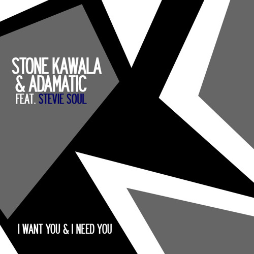 I Want You And I Need You (feat. Stevie Soul)