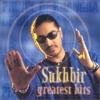 Sukhbir - Feeling Hot, Hot, Hot, Feat. Bina Mistry