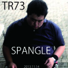 TR73 20131114