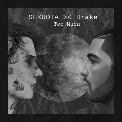 Drake-Too Much (Sekuoia Remix)