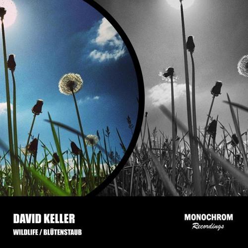 David Keller - Wildlife