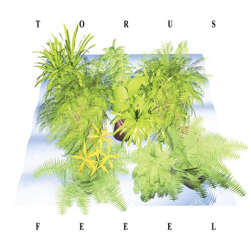 Torus - Untitled
