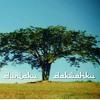 Duniaku Dakwahku - Ayai Feat Altimet