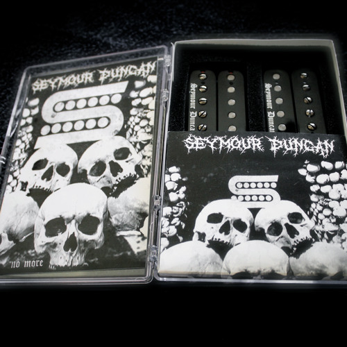 Seymour Ducan Black Winter (Škan)