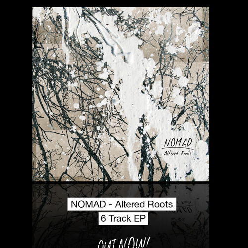 Momentum  (Altered Roots EP - DL on  http://nomadmusic.bandcamp.com/)