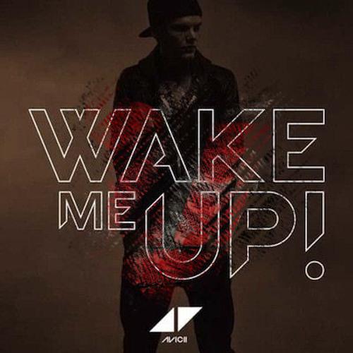 Avicii - Wake Me Up (Vankilla Bootleg #1)
