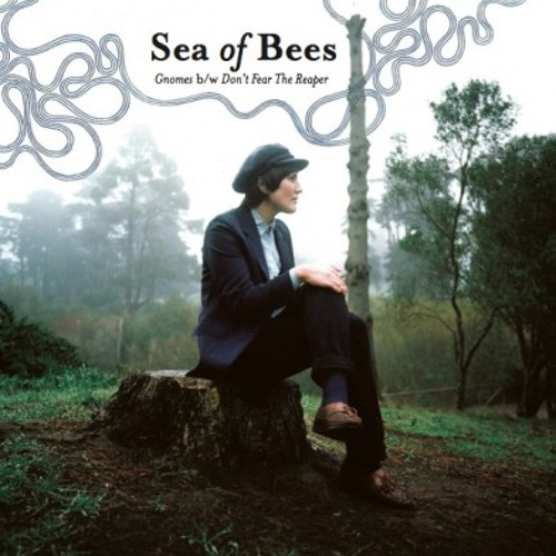 35) Sea of Bees - Gnomes (Tunng Remix)