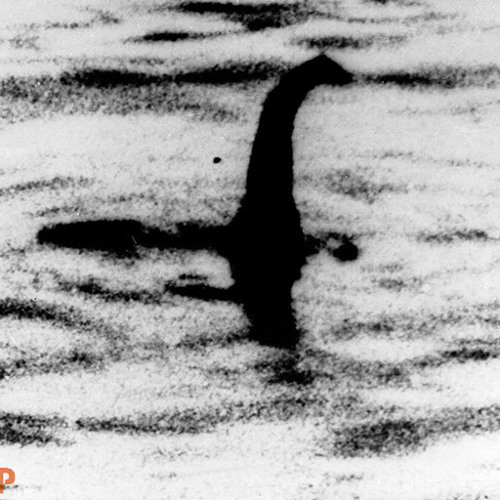 Minimal Criminal-The Lochness Monster(Preview)