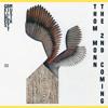 Thom Monn · Cosmic Dust · Gelbes Billett Musik 025