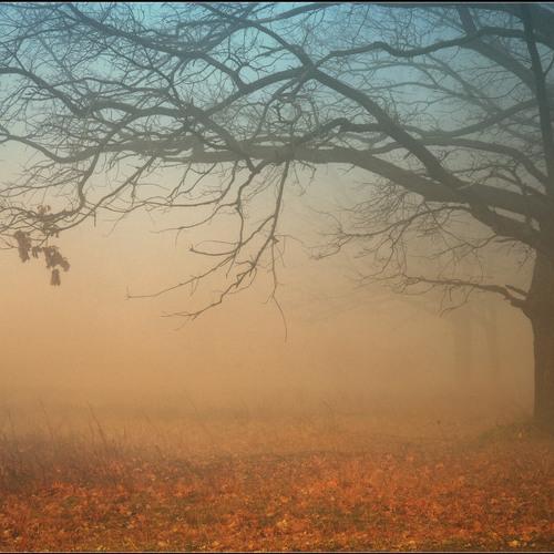 Bergi - Autumn #2 Mixtape