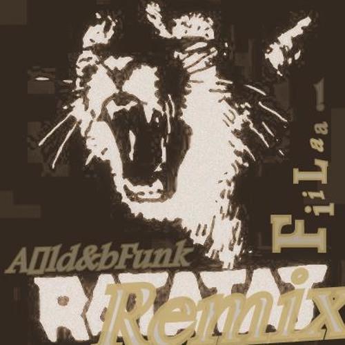 (Aäld&bFunk) - Fiilaa (Ratatat - Wildcat Remix)
