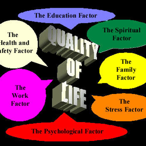 womens quality of life and work essay