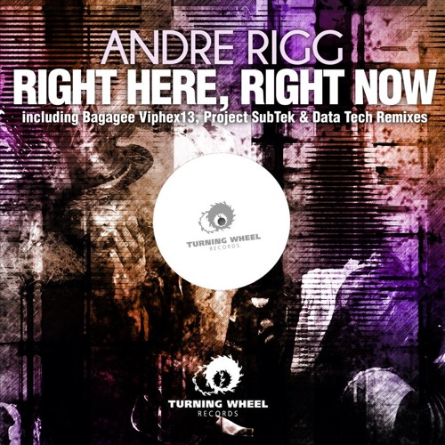 Andre Rigg - Right Here Right Now (Bagagee Viphex13's 1990 Mix)