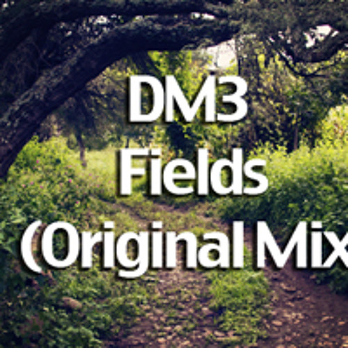 DM3 - Fields (Original Mix)