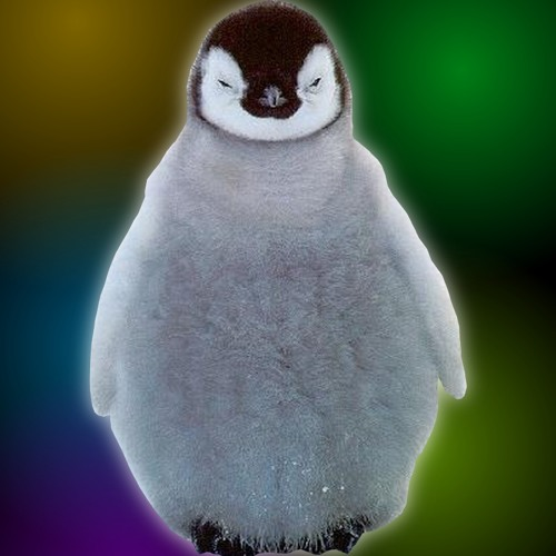 FreiStiel - EDM Penguins