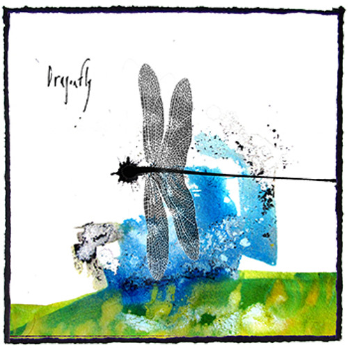 Liminal Digs :: Dragonfly
