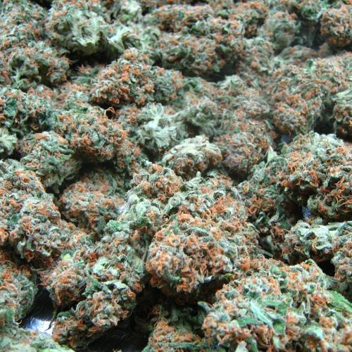 Get High - Feat: Hydro Marley