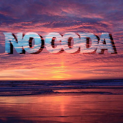 No Coda - The Penguin Laughs