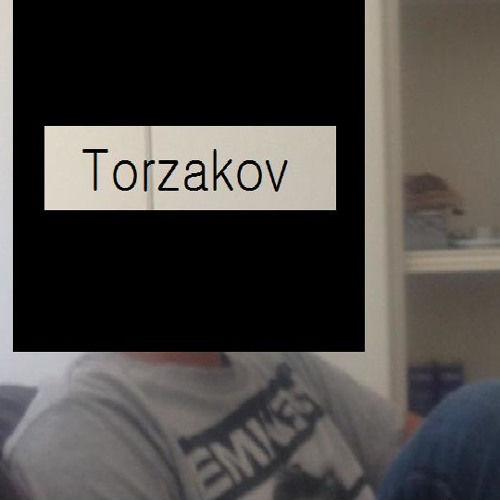 TORZAKOV (Original Mix)