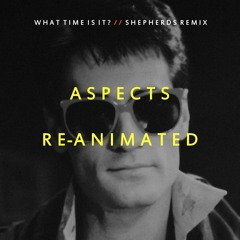 What Time Is It? (Shepherds Remix)