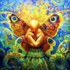 Miss Butterfly - Psymorphosis Shortcut.2013