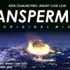 Keen Zigmund pres. Paulus Maar Groot - Panspermia (Original Mix)