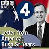 LFA: End of the Gulf War
