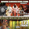 DJ ROB E ROB Presents The  Concrete jungle The New York Resume Mixtape 173 Tracks