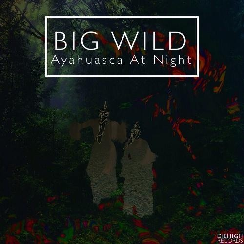 Big Wild - Ayahuasca At Night