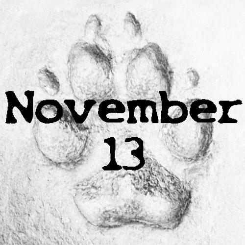 November 23, 13