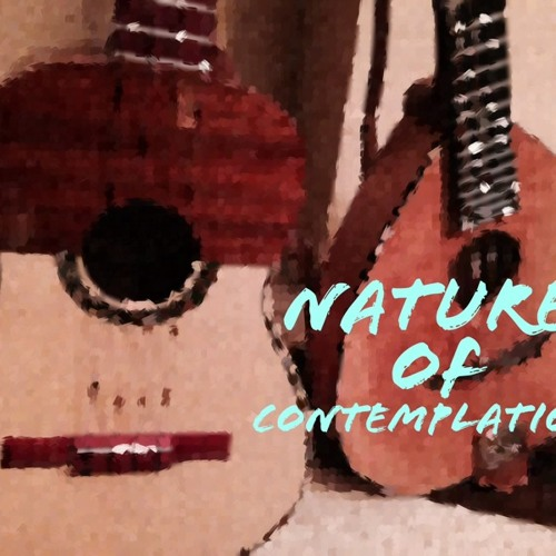 Nature of Contemplation