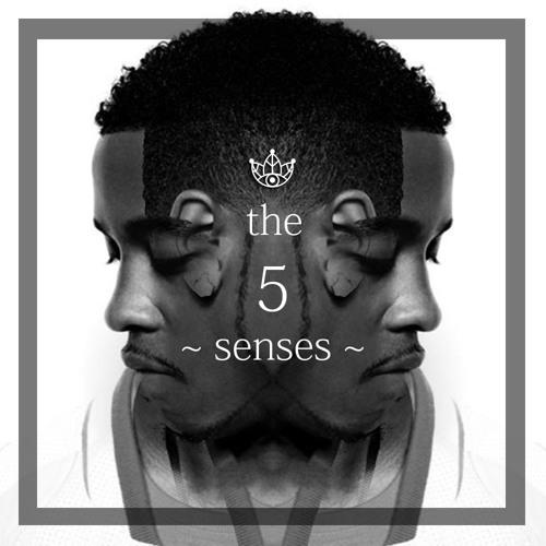 the 5 senses.
