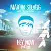 Martin Solveig Hey Now (LEÁZY XV Remix)