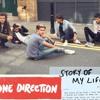 (One Direction) Story Of My Life - Josephine Alexandra