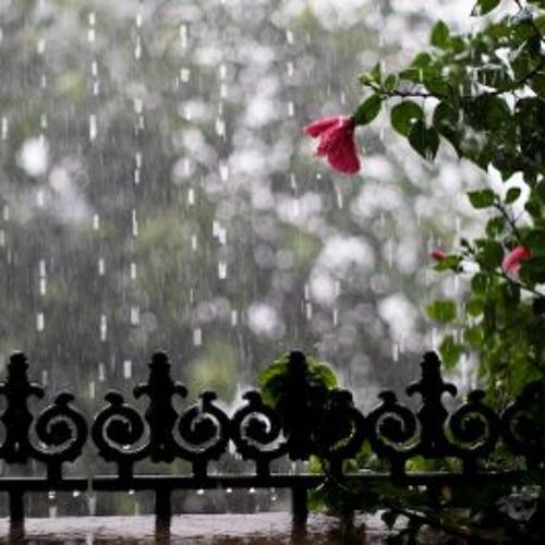 ManiRatnam - Monsoon Drizzle (Amruthavarshini)