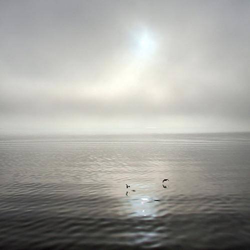 Julius Quintus: As A Cloud Passes The Sun, So My Life Turns Grey