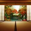 Asian autumn melody ( 秋旋律- Aki senritsu )
