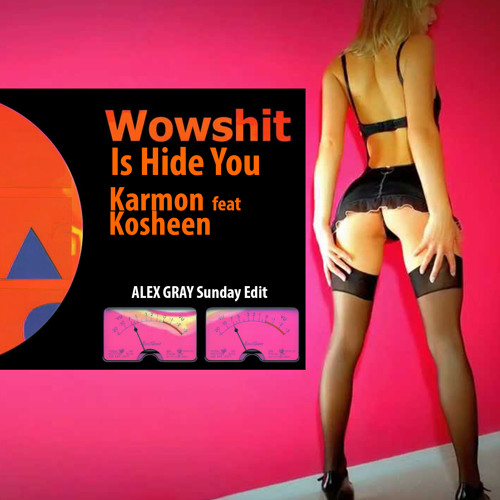 Karmon feat. Kosheen - Wowshit Is Hide U (Alex Gray Sunday Edit)