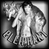 Elliphant - Down On Life (Animal Planet Remix)