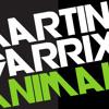 Martin Garrix - Animals (Bülent Gürbüz Mix)